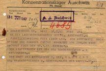 Auschwits-Birkenau WW 2. / by Ronald Nuus