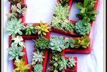 Decoración romántica / Ideas para decorar los espacios abiertos en vuestra boda. A mí me encantan!