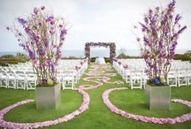 Wedding Aisles and Altars / Colorful ways to get down the aisle as suggested by Whidbey Party Girls!