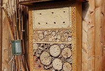 Insektenhotels ~ Käferhäuschen