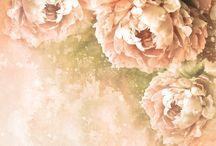 Papiery scrapbooking kwiaty