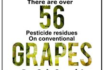 Pesticides on Produce / Only Organic guarantees that you will NOT be eating synthetic persistent pesticides on your produce.