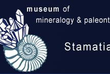 Mineralogical @ Paleontological Museum