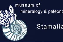 Mineralogical @ Paleontological Museum