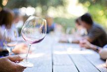 El mundo del vino / Un tablero para conocer más fondo el apasionante mundo del vino. Publicaremos fotos de bodegas, vinos, artículos de interés...