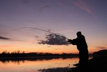 Fishing Reels / Find out some of the world's best fishing reels