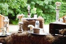 Farm house theme