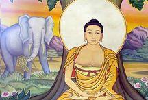 Buddha history