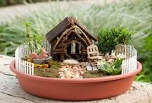 Fairy gardens / by Nancy Nelson