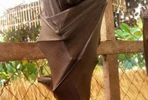 Giant Golden Crowned Flying Fox.