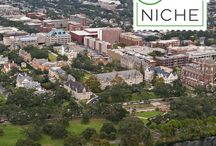 2016 Best Colleges in America / Here are some stellar schools that made it to the top of niche's Rankings list.   To view all of our 2016 College Rankings go to https://colleges.niche.com/rankings/best-colleges/ / by Niche