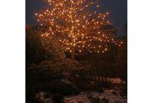 LED boomverlichting / Voor het sfeervol verlichten van donkere dagen.