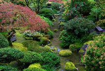 JAPANESE GARDEN II / It's all about Japanese garden round the world.