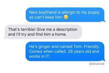 Boyfriend memes