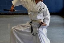 Kenjutsu / Aikiken / Iaido