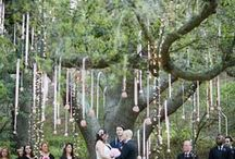 Wedding Ideas / by Sherri Lindo