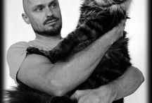 Cattery & Katzen-Züchter / Sammlung von Katzenzüchtern die uns aufgefallen sind, die wir kennen, die uns gefallen