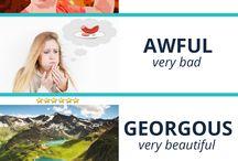 Vocabulary nauka słówek