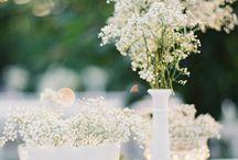 sarah + vu wedding