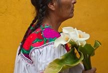 Mexicolores son los mejores~<3 / by Berta Salazar-Hagerty