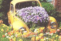 wedding flowers on cars!