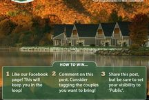 Keltic Quay Contest Promotions / From time to time we want to offer even more incentive to think about coming to stay with us. These graphics usually require some participation on your part but we promise it will be worth it if you win!