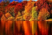 """The Colors of Autumn / """"Autumn is a second spring when every leaf is a flower."""""""