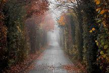 Autumn, Mon Amour