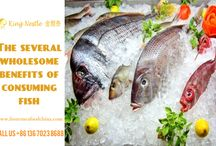 The several wholesome benefits of consuming fish