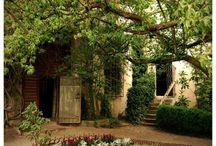 Old garden / staré zahrady