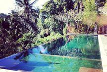 My little paradise !