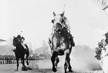 HORSES ~ RACING