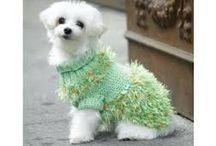Dog tricot