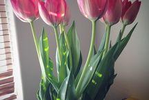 We love... flowers.