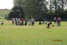 """Hondenschool HVC """"Vooruit"""" / Foto`s van trainingen en activiteiten"""