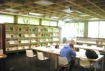 La Biblioteca di Crescenzago