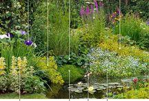 Water.gardens