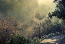 My Beautiful California / California Photography