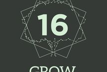 2016 GROW / Our Vision Theme for 2016 is GROW Expanding Our Containers for Growth.
