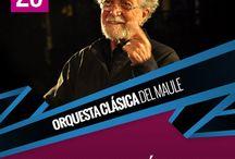 Cartelera TRM 2014 / Música, Danza, Teatro y Participación ciudadana.