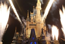 Walt Disney World !!! / Magic Kingdom , Epcot , Hollywood Studios and Animal Kingdom.  / by DeeDee Reeves