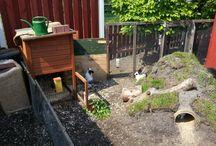 bunny enclosures
