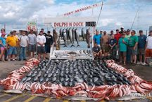 Catch of the day / 300 W Cotter Ave Port Aransas, Texas 78373
