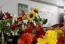 Bouquet Bouquet / BouquetBouquet Florist Shop2 471 South Pine Rd Everton Park 4053 Brisbane 0738555503