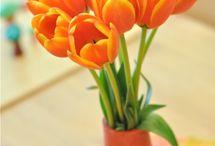 Orange is my color