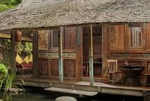 bambuindh