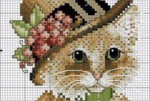 chat chapeaux