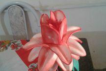 minhas flores