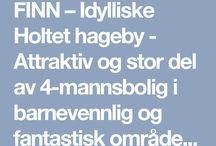 Boliger finn