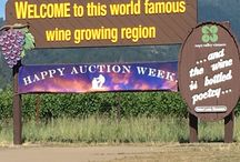 Auction Napa Valley / Each year, Napa Valley Vintners hosts the wine auction to end all wine auctions: Auction Napa Valley. From star-studded guests to once-in-a-lifetime biddings lots, this is Napa's weekend to shine #ANV16 / by St. Supery Estate Vineyards & Winery